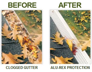 Gutter Clean leaf guard